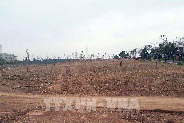 Bình Phước sẽ thu hồi hơn 18.800 ha đất phục vụ phát triển kinh tế