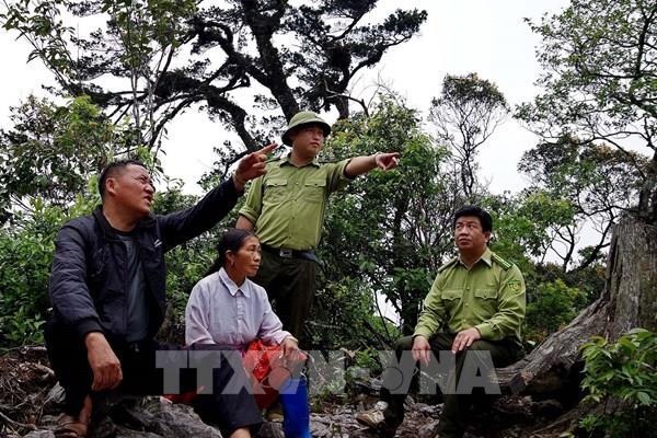 Hòa Bình: Người Mông chủ động bảo vệ rừng nguyên sinh để phát triển du lịch