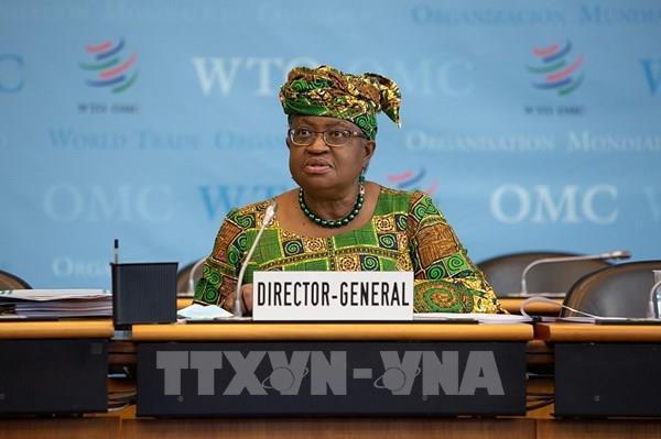 Tổng giám đốc WTO kêu gọi mở rộng sản xuất vaccine COVID-19