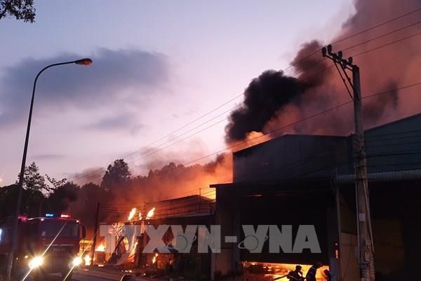 Giải cứu 4 người trong vụ cháy lúc nửa đêm ở TP.HCM