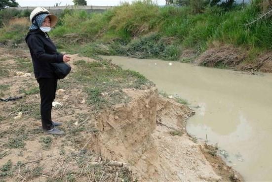 Phản hồi thông tin của TTXVN: Lâm Đồng yêu cầu tháo dỡ đập ngăn sông Đa Nhim