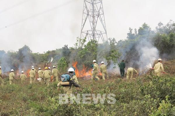 Công điện khẩn về các biện pháp phòng cháy, chữa cháy rừng
