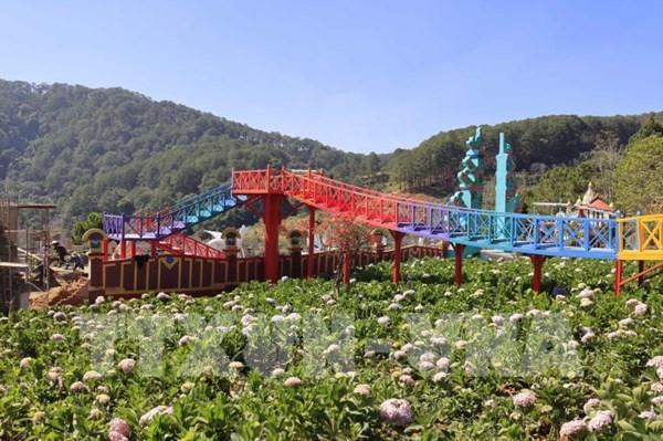 Lâm Đồng xử lý tình trạng xây dựng công trình, làm nhà kính trên đất lâm nghiệp