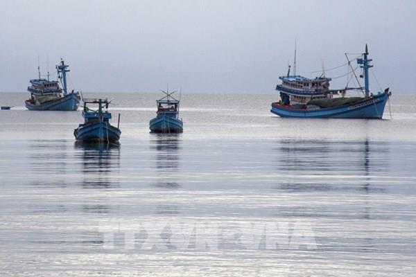 Xử lý nghiêm tổ chức, cá nhân để tàu cá khai thác hải sản trái phép