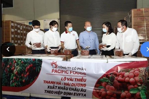 Lô vải thiều Việt Nam đầu tiên chinh phục thị trường EU theo Hiệp định EVFTA