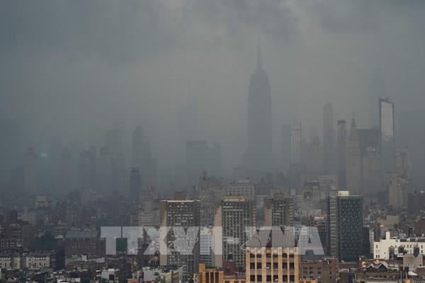 Thành phố New York ngập lụt trên diện rộng do ảnh hưởng của bão Elsa