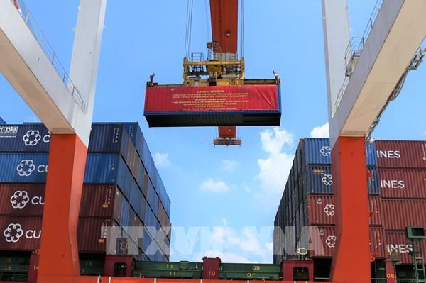 Bộ Tài chính đề xuất sửa đổi mức thuế xuất, nhập khẩu ưu đãi một số mặt hàng