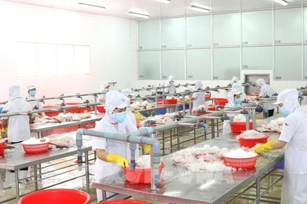 """Có bao nhiêu doanh nghiệp tại Tp. Hồ Chí Minh đăng ký thực hiện """"3 tại chỗ""""?"""