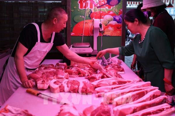 Xuất khẩu thịt lợn của Đan Mạch sang Trung Quốc tiếp tục tăng cao