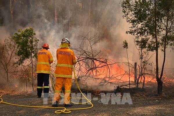 Australia đối mặt thảm họa cháy rừng thường xuyên và nguy hiểm hơn