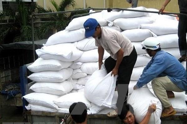 Đấu thầu gạo hỗ trợ người dân gặp khó khăn do dịch COVID-19