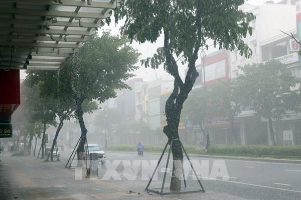 Đêm 23/9, áp thấp nhiệt đới đi vào vùng biển từ Đà Nẵng đến Bình Định