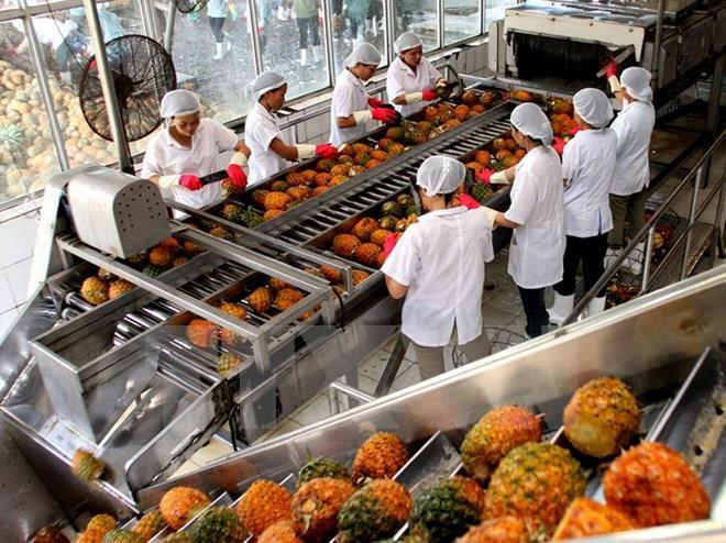 Hỗ trợ dự án chế biến sản phẩm nông nghiệp chủ lực quốc gia