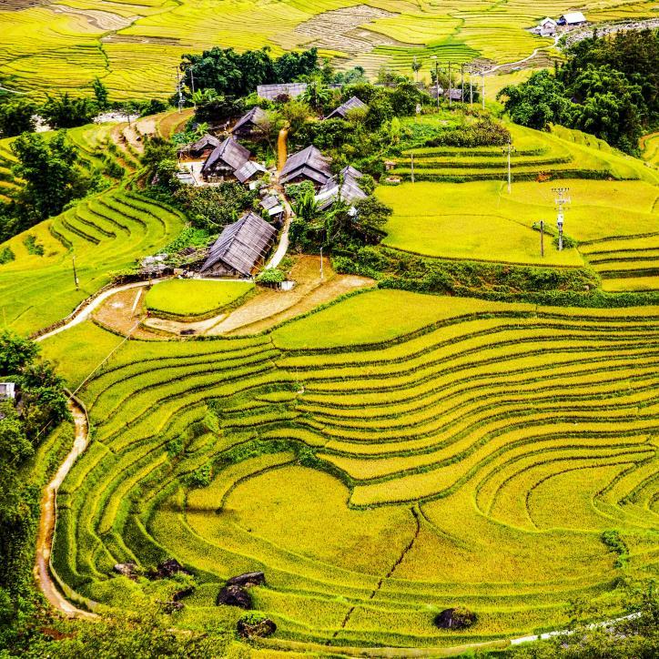Việt Nam vẻ đẹp bất tận - hình 2