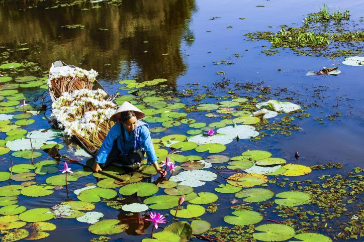 Việt Nam vẻ đẹp bất tận - hình 12