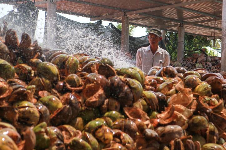 """Nghề dệt thảm xơ dừa trên quê hương """"Đồng Khởi"""" - hình 15"""