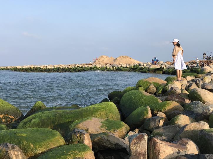 Đẹp ngỡ ngàng kè biển Đà Diễn - hình 4