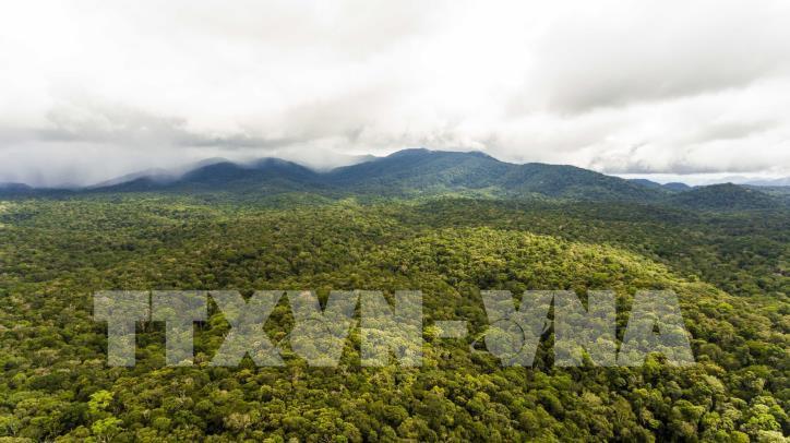Hấp dẫn Công viên địa chất Đắk Nông - hình 7