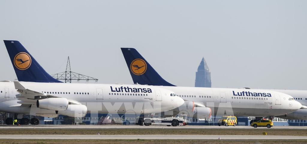 Hãng hàng không Lufthansa nối lại các chuyến bay từ giữa tháng 6