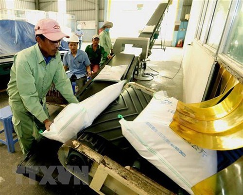 Hơn 10.000 người tiêu dùng Australia sẽ được dùng thử gạo Việt Nam