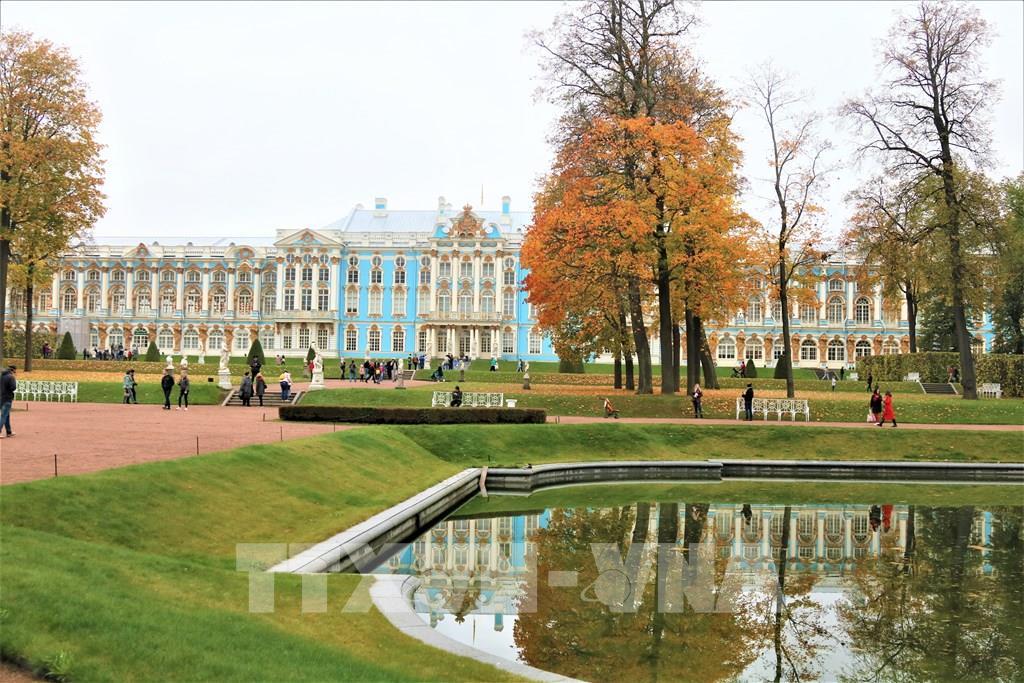 """Mùa thu vàng ở """"Làng vua"""" St. Petersburg"""