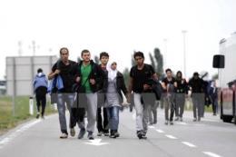 Vấn đề người di cư : EU muốn xóa bỏ