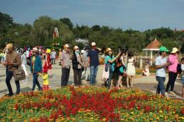 Festival hoa Đà Lạt 2017 có gì hấp dẫn?