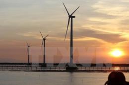 EIA: Năng lượng tái tạo sẽ chiếm gần 50% sản lượng điện toàn cầu