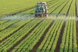Nông dân Mỹ sắp được bồi thường từ gói hỗ trợ 16 tỷ USD