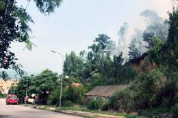 Cháy rừng ở Bãi Cháy, Quảng Ninh