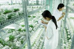 Đẩy mạnh ứng dụng khoa học công nghệ vào sản xuất nông nghiệp - Bài 3