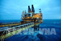 Giá dầu thế giới giảm xuống mức thấp nhất trong hơn một năm