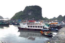 14 tàu du lịch lưu trú vỏ gỗ trên Vịnh Hạ Long bị đình chỉ hoạt động