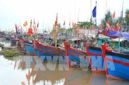 Các tỉnh Quảng Ninh, Hải Phòng và Thái Bình chủ động ứng phó áp thấp nhiệt đới