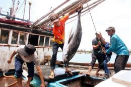 Xây dựng quy hoạch phát triển khai thác hải sản xa bờ toàn quốc đến năm 2020