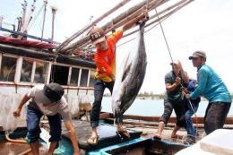 Thái Lan sẽ đánh giá hoạt động nhập khẩu hải sản từ các nước bị thẻ vàng IUU
