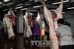 Phối hợp truy xuất nguồn gốc mặt hàng thịt lợn