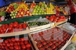 Nhận diện các cửa hàng kinh doanh trái cây an toàn tại Hà Nội