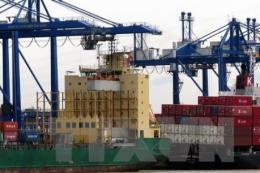 Fitch Solutions: Kinh tế Việt Nam tăng trưởng cao nhất trong 11 năm
