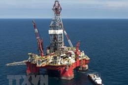 Kiện toàn Ban Chấp hành Nhà nước các dự án trọng điểm về dầu khí