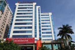 Agribank cảnh báo hiện tượng lừa đảo đánh cắp thông tin của khách hàng