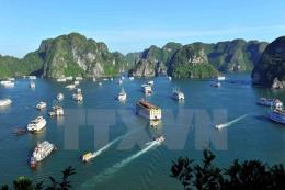 Tạm đình chỉ 3 tàu du lịch vi phạm quy định hoạt động trên vịnh Hạ Long