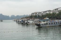 Quảng Ninh dừng cấp phép các tàu chở khách ra biển