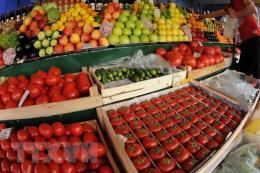 Nga tăng cường hỗ trợ xuất nhập khẩu với thị trường Việt Nam