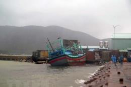Nhiều giải pháp quản lý, duy tu bảo dưỡng cảng cá