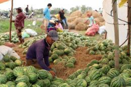 Dịch do virus Corona và tác động kinh tế- Bài 2: Biến thách thức thành thời cơ