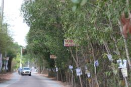 TP. Hồ Chí Minh: Giá đất nền chững lại sau thời gian tăng phi mã