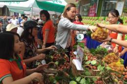 Vải thiều Bắc Giang xuất khẩu sang hơn 30 quốc gia