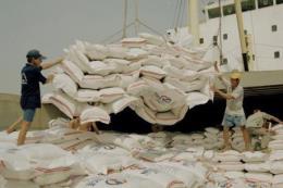 Xuất khẩu gạo Việt Nam đạt kết quả ấn tượng