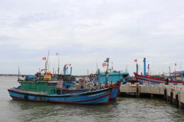 Ứng phó với bão số 3: Thanh Hóa quản lý tàu thuyền đảm bảo an toàn về người, tài sản